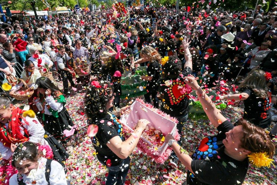 batalha das flores